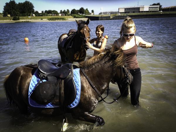 paardenmeisjes-2