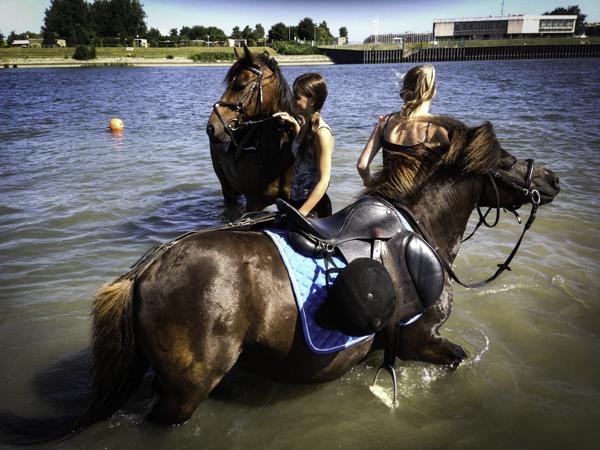 paardenmeisjes-3