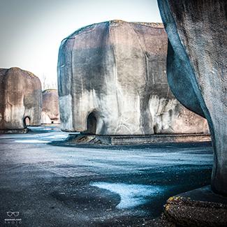 Olifanten bij Almere